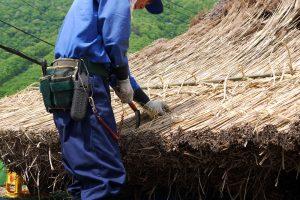 茅屋根の葺き替え作業
